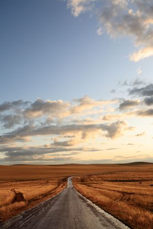 road in middle of rural area to evening  Stock Photo - 6129305