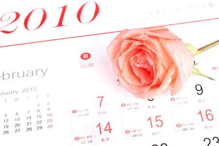 rose for valentine's day with calendar Stock Photo - 6426496