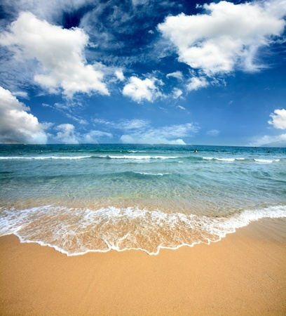 Gorgeous Beach in Summertime ,beach and tropical sea Stock Photo - 13492443