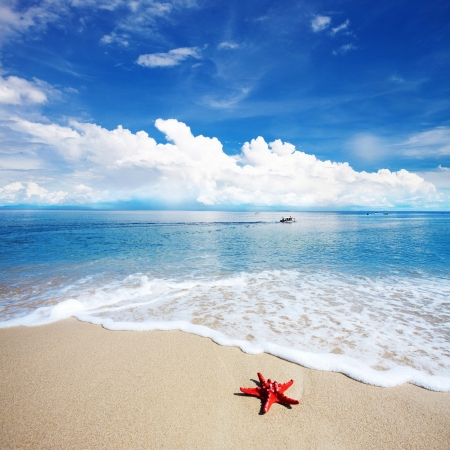 holiday destination: landscape of tropical island beach with perfect sky