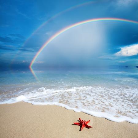 etoile de mer: arc-en-avec plage