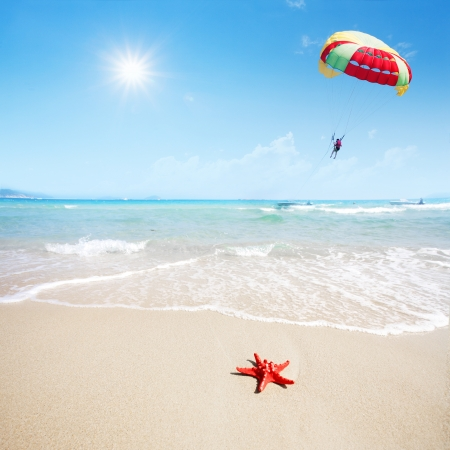 close up red starfish on beach and parachute in sky photo