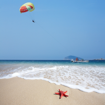 close up red starfish on beach and parachute in sky Stock Photo - 16302836