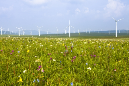 Wind turbine on the green grass over the blue clouded sky Stock Photo - 17333222