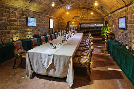 wine tasting room in basement
