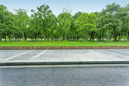 stedelijke weg met groene bomen Stockfoto