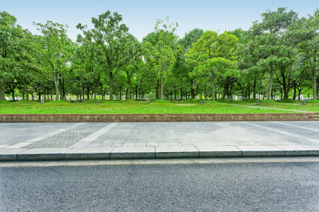 empty street: urban road with green trees Stock Photo