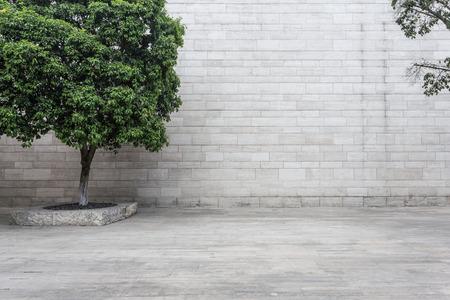 brick floor: white brick wall and empty sandstone road