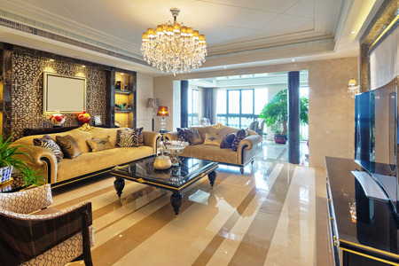luxury house: luxury living room interior