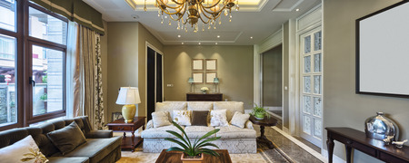 residential homes: luxury living room interior