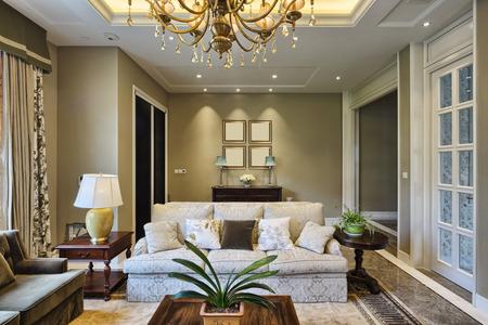 residential: luxury living room interior