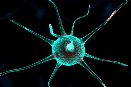 dendrites: 3d nerve cell