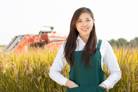 agronomist: young chinese woman agonomist in golden cereal field with small harvester