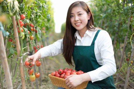 young beautiful chinese woman works in green field Stock Photo