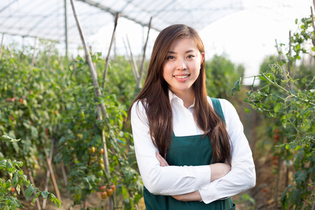 agronomist: young beautiful asian woman works in green field