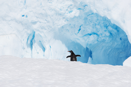 beautiful white icy hill with cave in antarctic
