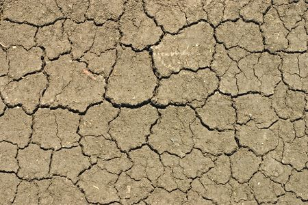 Cleft surface of dry ground at drought photo
