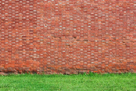 Red brick wall background with green grass photo