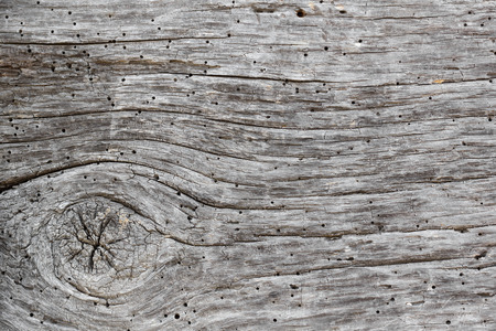 faded: Grey faded timber textured