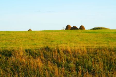 Haystacks on to the meadow photo