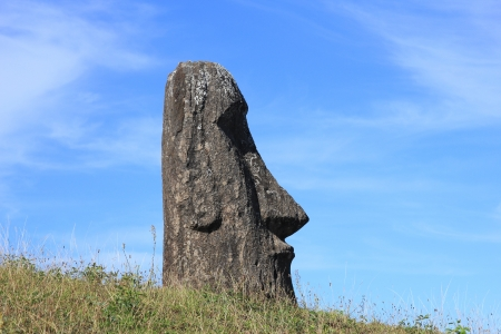 Moai at Quarry, Easter Island, Chile  photo