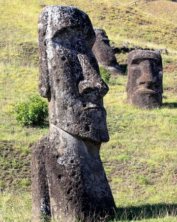 rapa nui: Moai en la cantera, Isla de Pascua, Chile Foto de archivo