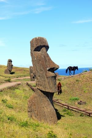 Wild horses next to moai in Rano Raraku national park, Easter island  Stock Photo