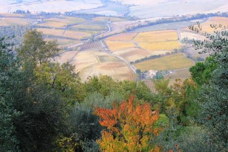 Tuscany at fall photo