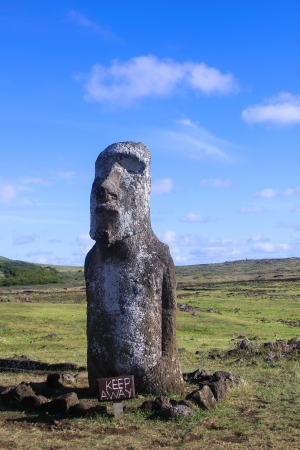 Moai statue on Easter Island, Chile Stock Photo