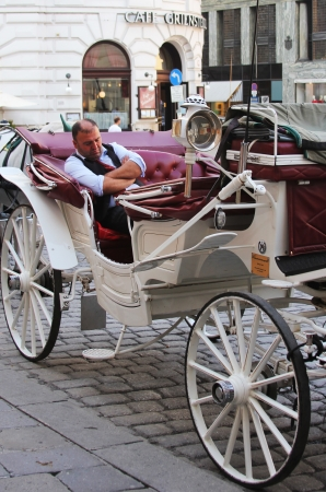 the coachman: VIENNA, AUSTRIA - SEPTEMBER 2 :Fiaker carriage driver waiting for tourists on September 2, 2012 in Vienna, Austria. For many tourists a fieker ride is the most popular attraction in  Vienna. Editorial
