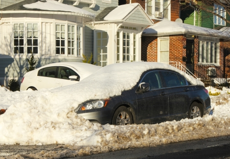 inconvenient: Cars under snow in Brooklyn, NY  after massive snowstorm Nemo strikes Northeast