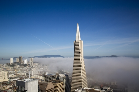 SAN FRANCISCO,CA - MARCH 29:Areal view on Transamerica pyramid and city of San Francisco covered by dense fog  on March 29, 2013. The Transamerica Pyramid is the tallest skyscraper in San Francisco