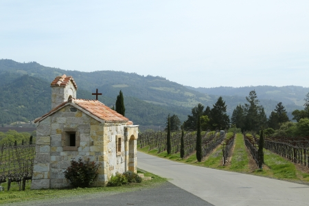 napa valley: The Chapel next to vineyard in Napa Valley, California