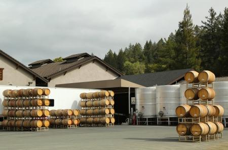 Oak barrels and stainless steel fermentation tanks at the vineyard