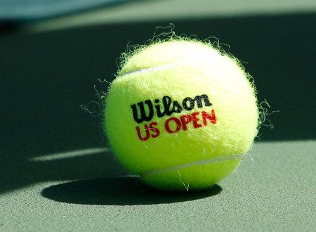 FLUSHING, NY - SEPTEMBER 5  Wilson tennis ball on tennis court at Arthur Ashe Stadium on September 5, 2013 in Flushing, NY  Wilson is the Official Ball of the US Open since 1979