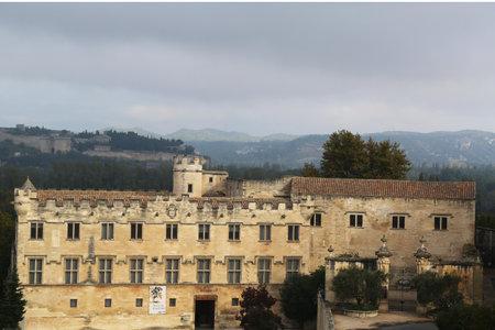 petit: Le Petit Palais Museum in Avignon, France