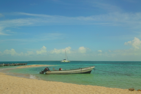 Beach at the Goff s Caye in Belize