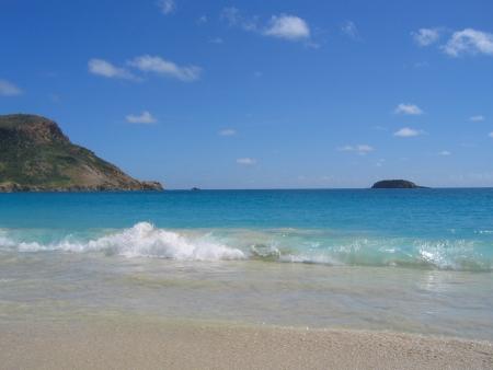 indies: Saline beach, St  Barts, French West Indies