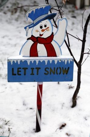 let on: Deje que se muestra nieve