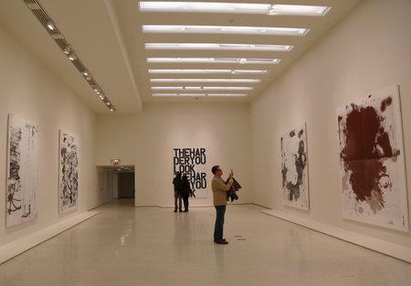 ニューヨーク - クリストファー ・ ウール展会場で 2014 年 1 月 12 日にニューヨークの近現代美術のソロモン ・ R ・ グッゲンハイム美術館で 1 月 12  報道画像
