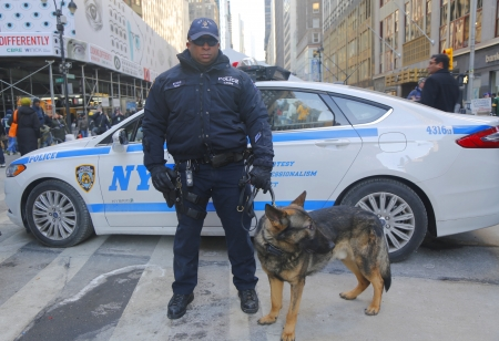 counter terrorism: NEW YORK - JANUARY 30   NYPD transit bureau K-9 police officer and K-9 German Shepherd providing security on Broadway during Super Bowl XLVIII week in Manhattan on January 30, 2014
