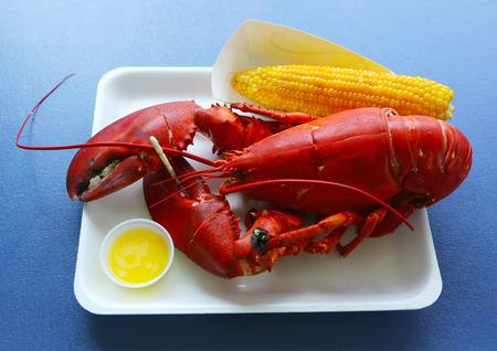 Boiled Maine lobster with corn Stock Photo - 26592813