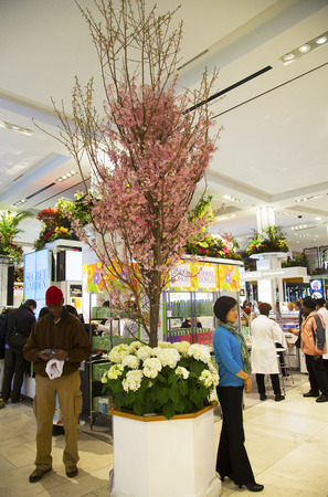 NEW YORK - APRIL 1  The Secret Garden theme flower decoration with Cherry three during famous Macy s Annual Flower Show in the department store at the Herald Square in  Manhattan on April 1, 2014