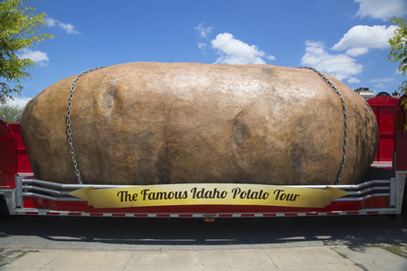 russet potato: NEW YORK - MAY 18  The World�s Largest Potato on Wheels presented during The Famous Idaho Potato Tour in Brooklyn on May 18, 2014  It is giant 12,000 lb fabricated Idaho Russet potato on a big truck