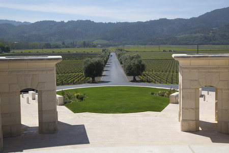 silverado: NAPA VALLEY, CA - APRIL 14  Napa Valley view from Opus One Winery on April 14, 2014  In the 1990s, Opus One became the California cult wine to be widely sold in Asia and Europe