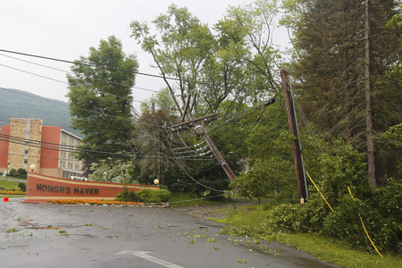 severe weather: ELLENVILLE, NEW YORK - JULY 13  Fallen tree damaged power lines in the aftermath of  severe weather and tornado in Ulster County, New York on July 13, 2014 Editorial