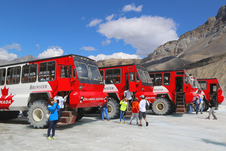 banff national park: ALBERTA, CANADA- JULY 27  Massive Ice Explorers, specially designed for glacial travel, take tourists onto the surface of the Athabasca Glacier  on July 27, 2014 in the Columbia Icefields, Canada   Editorial