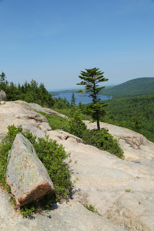 anomalous: Areal view from the South Bubble Mountain At Acadia National Park, Maine, USA