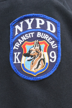 k 9: NEW YORK - SEPTEMBER 8: Close up of shoulder  patch of NYPD Transit Bureau K-9 Unit.  NYPD transit bureau K-9 unit providing security during US Open 2014 on September 8, 2014 in New York