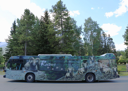 roam: BANFF, CANADA - JULY 29: The Roam Banff local service in Banff National Park on July 29, 2014. In 2008 Banff became the first municipality in Canada to introduce an all-hybrid electric transit fleet.